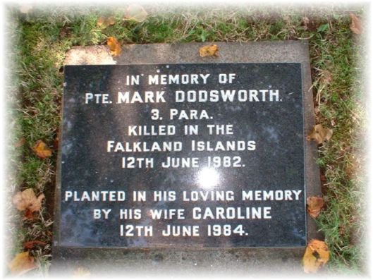 Pte Mark Dodsworth 3 Para
