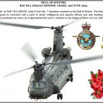 19 YEARS ANNIVERSARY CHINOOK CRASH MULL OF KINTYRE 2ND JUNE 1994